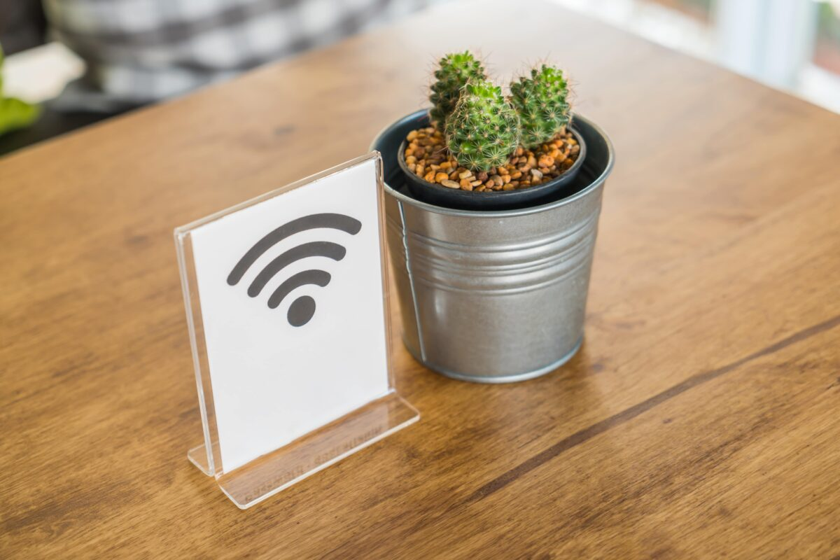 pot-with-cactus-and-a-wifi-signal-min