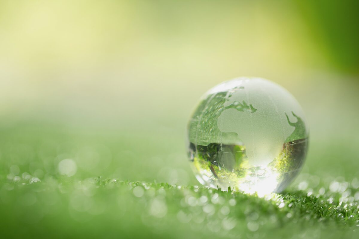 close-up-of-crystal-globe-resting-on-grass-in-a-forest-min